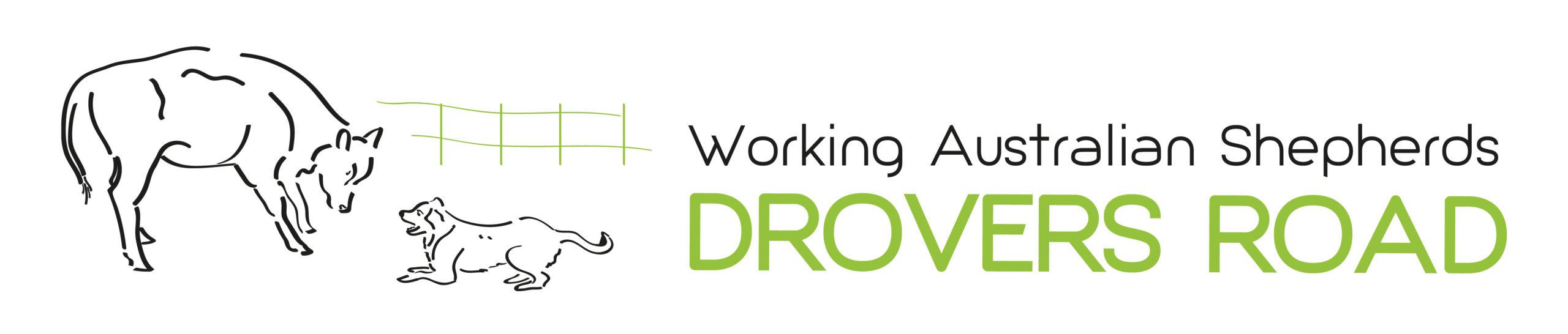 Droversroad Logo